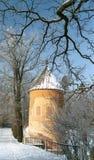 Árvores da torre e do inverno Foto de Stock