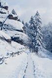 Árvores das montanhas cobertas com a neve As árvores são congeladas Para o fundo imagem de stock