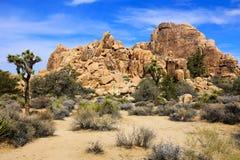 Árvores das rochas e de Joshua em Joshua Tree National Park Fotografia de Stock Royalty Free