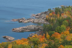 Árvores de Autmn perto da água e da costa Fotografia de Stock