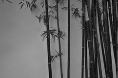 Árvores de bambu ao lado da parede imagem de stock royalty free