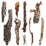 Árvores de casca Imagem de Stock