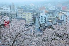 Árvores de cereja românticas na flor completa na cidade de Tsuyama Fotografia de Stock