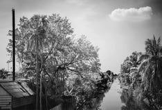 Árvores de coco da paisagem com canal Imagens de Stock Royalty Free