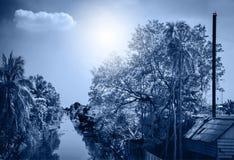 Árvores de coco da paisagem com canal Fotos de Stock