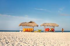 Árvores de coco e sofás da praia Fotografia de Stock