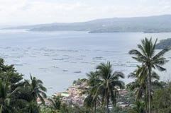 Árvores de coco no lago e no vulcão de negligência hilltop foto de stock