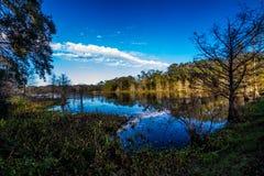 Árvores de Cypress velhas que refletem nas águas imóveis curvatura do lago Creekfield, Brazos, Texas. fotos de stock