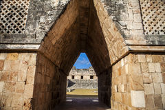 Árvores de floresta de México Uxmal das pirâmides Foto de Stock Royalty Free