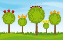 Árvores de fruta Fotos de Stock