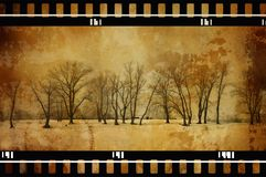 Árvores de Grunge imagem de stock