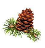 Árvores de Natal de Pinecone ilustração do vetor