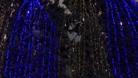 Árvores de Natal em festões elétricas, noite video estoque