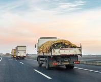 Árvores de Natal levando do caminhão na estrada Muito árvore de Natal no caminhão coberto com o encerado foto de stock royalty free