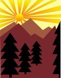 Árvores de pinho no nascer do sol Foto de Stock Royalty Free