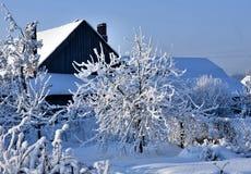 Árvores do jardim cobertas com a neve branca macia Fotografia de Stock Royalty Free