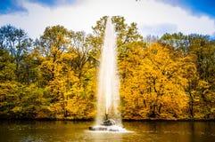 Árvores do lago fountain Fotografia de Stock