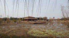 Árvores do lago winter na cena desolada em torno das construções antigas foto de stock royalty free