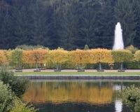 Árvores do outono em Peterhof, St Petersburg, Rússia Imagens de Stock