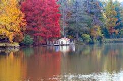 Árvores do outono em torno do lago Árvores da queda refletidas no lago Fotos de Stock Royalty Free