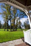 Árvores do outono no prado com grama do miradouro de madeira Foto de Stock