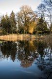 Árvores do outono que refletem na superfície da água do lago, estação do outono Fotografia de Stock