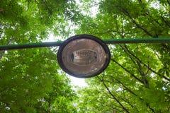 Árvores do poste de luz do passeio Imagem de Stock Royalty Free