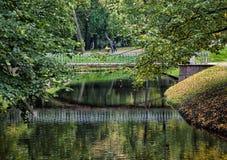 Árvores do rio e do outono em um parque quieto Imagem de Stock Royalty Free
