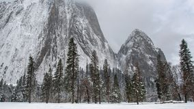 Árvores do vale do TL Yosemite e cara da rocha filme