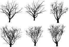 Árvores do vetor da coleção Fotografia de Stock