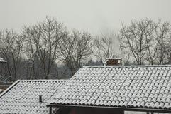 Árvores dos telhados e árvores e neve de SnowRoofs fotos de stock