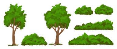 Árvores e arbustos do vetor ajustados ilustração royalty free
