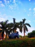 Árvores e céu azul dos fundos foto de stock royalty free
