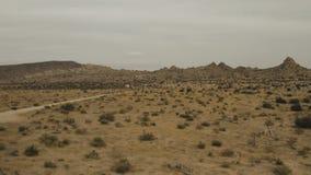 Árvores e casas de uma rua da sujeira no deserto video estoque