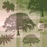Árvores e folhas abstratas Fotos de Stock