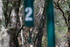 Árvores e gancho Imagem de Stock