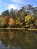 Árvores e lago Fotografia de Stock Royalty Free