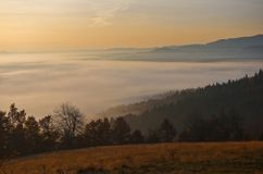 Árvores e montes na montanha na manhã imagens de stock