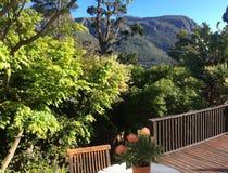 Árvores e Mountain View Foto de Stock