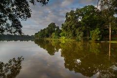 Árvores e nuvens refletidas no lago Fotos de Stock
