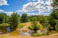Árvores e o rio no céu do fundo Imagem de Stock Royalty Free