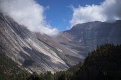 Árvores e penhasco no fundo nas montanhas de Himalaya, Nepal Foto de Stock