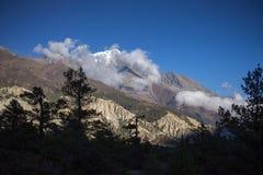 Árvores e pico snowcapped no fundo nas montanhas de Himalaya, Nepal Imagens de Stock Royalty Free