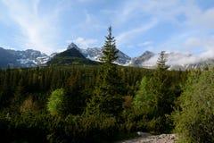 Árvores e picos no vale de Gasienicowa Imagens de Stock