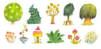 Árvores e plantas Fotos de Stock