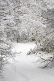 Árvores e porta na neve fotografia de stock