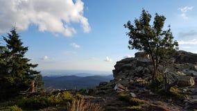 Árvores e rochas com céu azul Fotografia de Stock Royalty Free