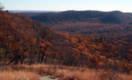 Árvores e vegetação no parque estadual da montanha do urso fotografia de stock