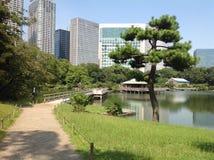 Árvores em um parque verde no Tóquio Fotos de Stock