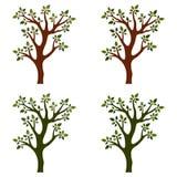 Árvores isoladas com ramos no fundo branco ilustração royalty free